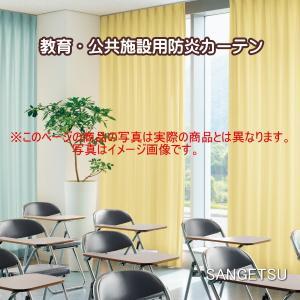 カーテン 日除け 防炎 サンゲツ グレトナ 標準縫製仕様 1.5倍ヒダ(アジャスタフック) PK12...