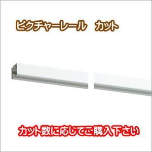 レールカット(1カットの金額です。カット数に応じて購入下さい)|interior-fuji