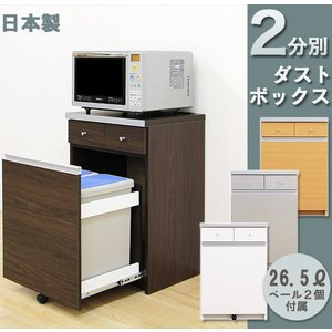 ダストボックス キッチンカウンター 2分別 完成品 ペール付き キッチン用ごみ箱 interior-moka224