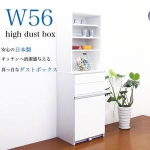 キッチンボード ダストボックス ペール付き 収納棚 interior-moka224