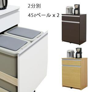 ダストボックス 2分別 幅65cm 完成品 レンジ台 キッチン収納|interior-more