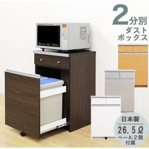 ゴミ箱を隠し清潔感のあるキッチンに。カウンターとしても大活躍のペール付きダストボックスです。2分別タ...