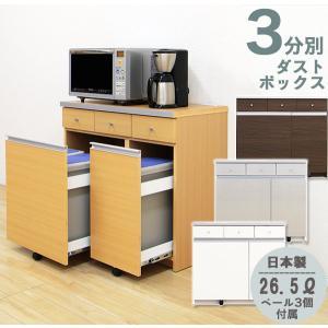 ダストボックス キッチンカウンター ペール付き 3分別 キッチン用ごみ箱|interior-more