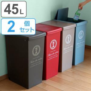 ゴミ箱 2個セット 45L ごみ箱 ダストボックス スライドペール ( 屑入れ フタ付き 大容量 )|interior-palette