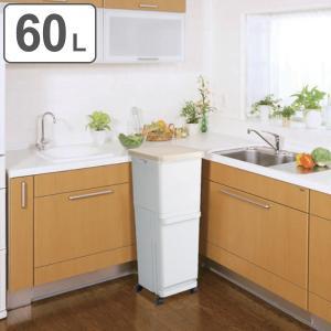 ゴミ箱 60L 2段 ふた付き セパ 抗菌 分別 スリム ペダルペール キッチン ( 60 リットル ダストボックス ペダル キャスター ごみ箱 コンパクト フタ付き )|interior-palette