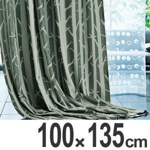 カーテン スミノエ SHIRAKABA シラカバ 遮光カーテン 100x135cm ( 遮光 ドレープカーテン 既製 )|interior-palette
