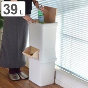 ゴミ箱 分別 二段 ダストボックスファイン 39L ( ごみ箱 ダストボックス ダストBOX くず入れ くずカゴ 壁際 )|interior-palette