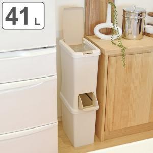 ゴミ箱 分別 二段 ダストボックスファイン スリム 41L ( ごみ箱 ダストボックス ダストBOX くず入れ くずカゴ 隙間 省スペース )|interior-palette