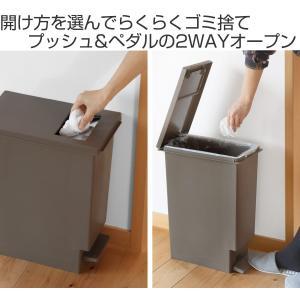 ゴミ箱 ペダル ユニード プッシュ&ペダル 2...の詳細画像1