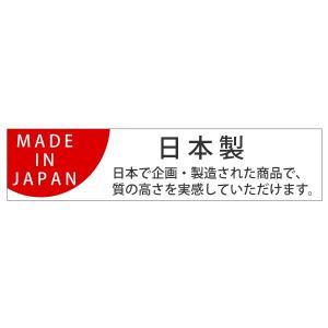 アルサス4 フライパン 20cm IH対応 日本製 ( ガス火対応 炒め鍋 キッチン用品 )|interior-palette|06