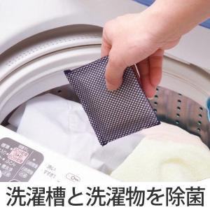 洗濯槽クリーナー ヨウ素DE洗濯槽キレイ ( 洗濯槽 抗菌 除菌 消臭 防臭 防カビ 部屋干し 室内干し 臭い )|interior-palette