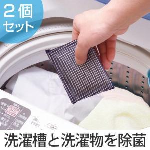 洗濯槽クリーナー ヨウ素DE洗濯槽キレイ 2個組 ( 洗濯槽 抗菌 除菌 消臭 防臭 防カビ 部屋干し 室内干し 臭い )|interior-palette