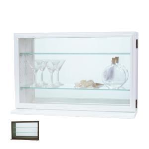 コレクションケース ガラスケース スカーラY 約幅56cm ( キャビネット コレクション ラック ガラス 収納 シンプル 棚 完成品 ) interior-palette