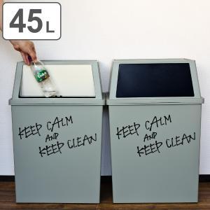 ゴミ箱 分別 積み重ねゴミ箱 ワイド 45リットル ( ごみ箱 ふた付き ダストボックス スタッキング ) interior-palette