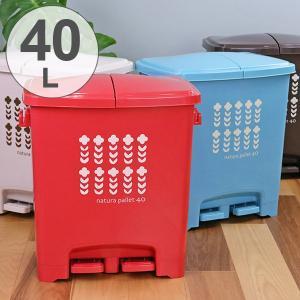 ゴミ箱 分別 エコペダルペール 40L 日本製 ( ごみ箱 ふた付き ダストボックス 蓋 フタ 付き )|interior-palette