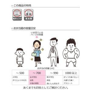 特価 お弁当箱 スクエアランチボックス 2段 キャンベル 590ml ( 弁当箱 レンジ対応 日本製 )|interior-palette|06