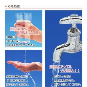 アズマジック トイレ洗剤 400ml CH857 ( トイレ掃除 トイレ用 洗剤 クリーナー ) interior-palette 08