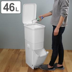 ゴミ箱 ふた付き 分別 ツインペダルペール ネオカラー 2段 46L 幅28.5cm ( ごみ箱 分別ごみ箱 6分別 約 幅30 cm )|interior-palette