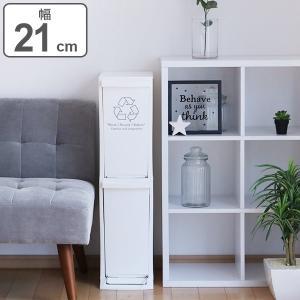 ゴミ箱 分別 ダストボックス 20L 2段 幅21cm 日本製 ( ごみ箱 ふた付き ダストボックス 蓋 フタ 付き )|interior-palette