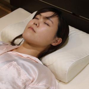 磁気枕 カバー付き 枕 肩こり 家庭用磁気治療器 磁気まくら ( まくら マクラ 寝具 )|interior-palette
