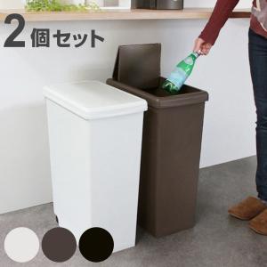 ゴミ箱 2個セット 45L 分別 ふた付き スライドペール 45リットル ごみ箱 ダストボックス 45リトッル ( 屑入れ フタ付き 大容量 )|interior-palette