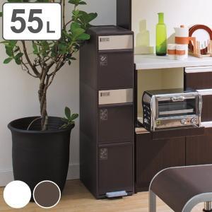 ゴミ箱 55L 分別 スイングステーション ワイド 3段 ( 55 リットル ダストボックス ごみ箱 キッチン ふた付き 分別ゴミ箱 縦型 スリム コンパクト )|interior-palette