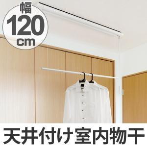 室内物干し 室内用昇降式物干 竿120cm ( 部屋干し 天井 吊り下げ )|interior-palette