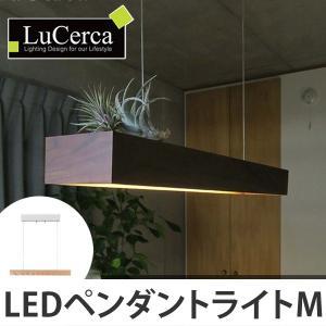 ペンダントライト 1灯ペンダント 北欧 LuCerca Placer M ( 照明 おしゃれ 天井 )|interior-palette