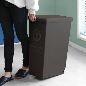 【週末限定クーポン】ゴミ箱 45L ふた付き スライドペール 45リットル ( ごみ箱 ダストボックス キッチン )|interior-palette|08