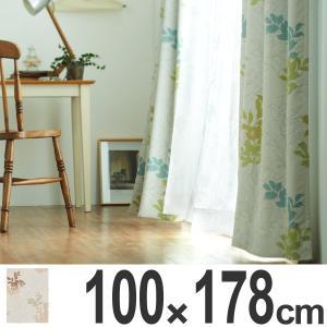 カーテン スミノエ ドレープカーテン ネクストホーム Naturalplus グラスグラス 100x178cm ( タッセル 洗える 既製 )|interior-palette
