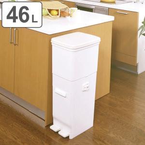 ゴミ箱 46L 2段 ふた付き セパ 抗菌 分別 ツイン ペダルペール キッチン ( 47 リットル ダストボックス ペダル ごみ箱 コンパクト フタ付き )|interior-palette