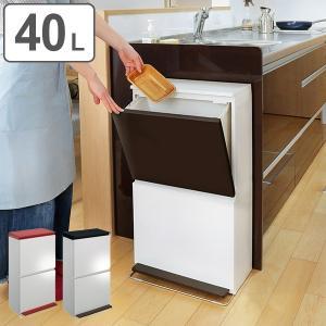 ゴミ箱 分別 2段 薄型 ワイド 40L 縦型 分別ゴミ箱 モダンカラー ( キッチン 分別 ごみ箱 ふた付き スリム ペダル )|interior-palette