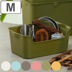 収納ボックス カタス M カラーボックス インナーボックス 引き出し ( 収納ケース 収納 プラスチック ケース ボックス ) interior-palette