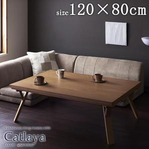 こたつテーブル catlaya カトレーヤ 長方形 120×...