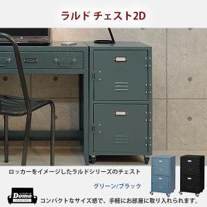 チェスト キャビネット 2段 リビング収納 ラルド チェスト 2D tpn-30gr bk 送料無料...