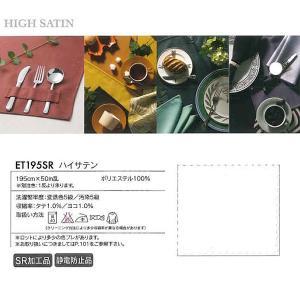 アベイチ select テーブルクロス ハイサテンクロス リネン ET195SR 170×130cm|interiortool