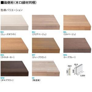 大建 ハピアベイシス ハモンド箱型 箱側桁(木口縁材同梱)3300 CR223-K21 1枚 interiortool