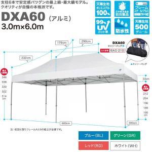 イージーアップ テント デラックス(アルミフレーム) 3.0m×6.0m DXA60|interiortool