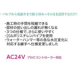 グローベン 電磁弁ユニット(減圧弁なし)3系統 口径20A- AC24V用 C10SBY 300|interiortool