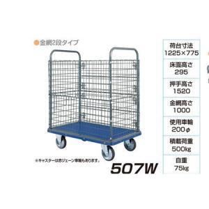 アイケーキャリー 台車 金網2段タイプ 507W 500kg荷重|interiortool
