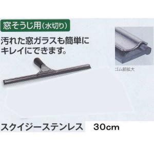 テラモト PULEX(ピューレックス) スクイジー ステンレス 30cm HP-510-030-0|interiortool