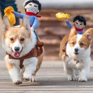 ペット 犬服 おっさんカウボーイ ロデオ(背中乗り M L サイズ) 小型犬/中型犬 ハロウィン グッズ【送料無料】セール inuya 05