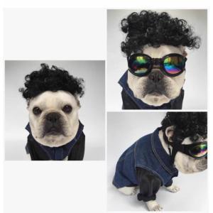犬用 カツラ かつら ウィッグ 男の子用 キャップ (帽子変身 かぶりもの)