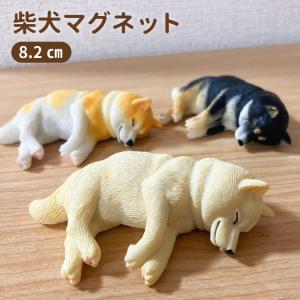 柴犬 ネムネム マグネット 8.2cm 犬 各種 雑貨 グッズ ポリレジン 犬屋