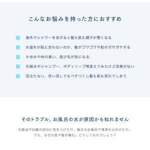 海外配達の方 【ionac】 イオナック交換フィルター (ご購入15,000円以上で送料無料!)|ionac|03