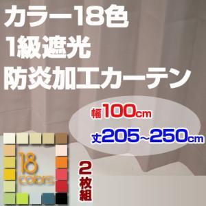 カーテン 1級遮光 防炎加工 ドレープカーテン「レイナ」幅100cm×2枚組 丈205-250cmまで5cm刻み|ioo