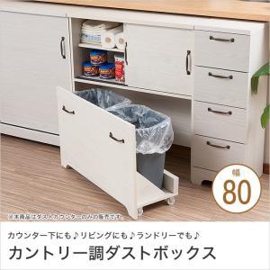 ダストボックス カウンター下収納 ゴミ箱 カウンター 2分別 白 ホワイト 木製 ダストカウンター カウンター下ダストボックス カントリー|ioo