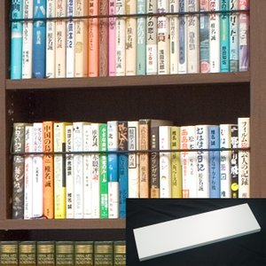 〈オプション〉天井突っ張り本棚「愛書家」専用 上型BOX用棚板|ioo