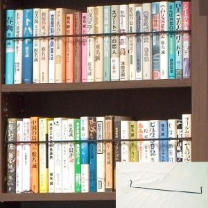 〈オプション〉天井突っ張り本棚「愛書家」専用 上型BOX用ブックガード|ioo