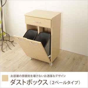 ダストボックス 2分別 ダストボックス 2ペール ゴミ箱付き ペール ワゴン キッチンカウンター  ダストカウンター ゴミ箱 ごみ箱 キャスター付き カウンター おし|ioo